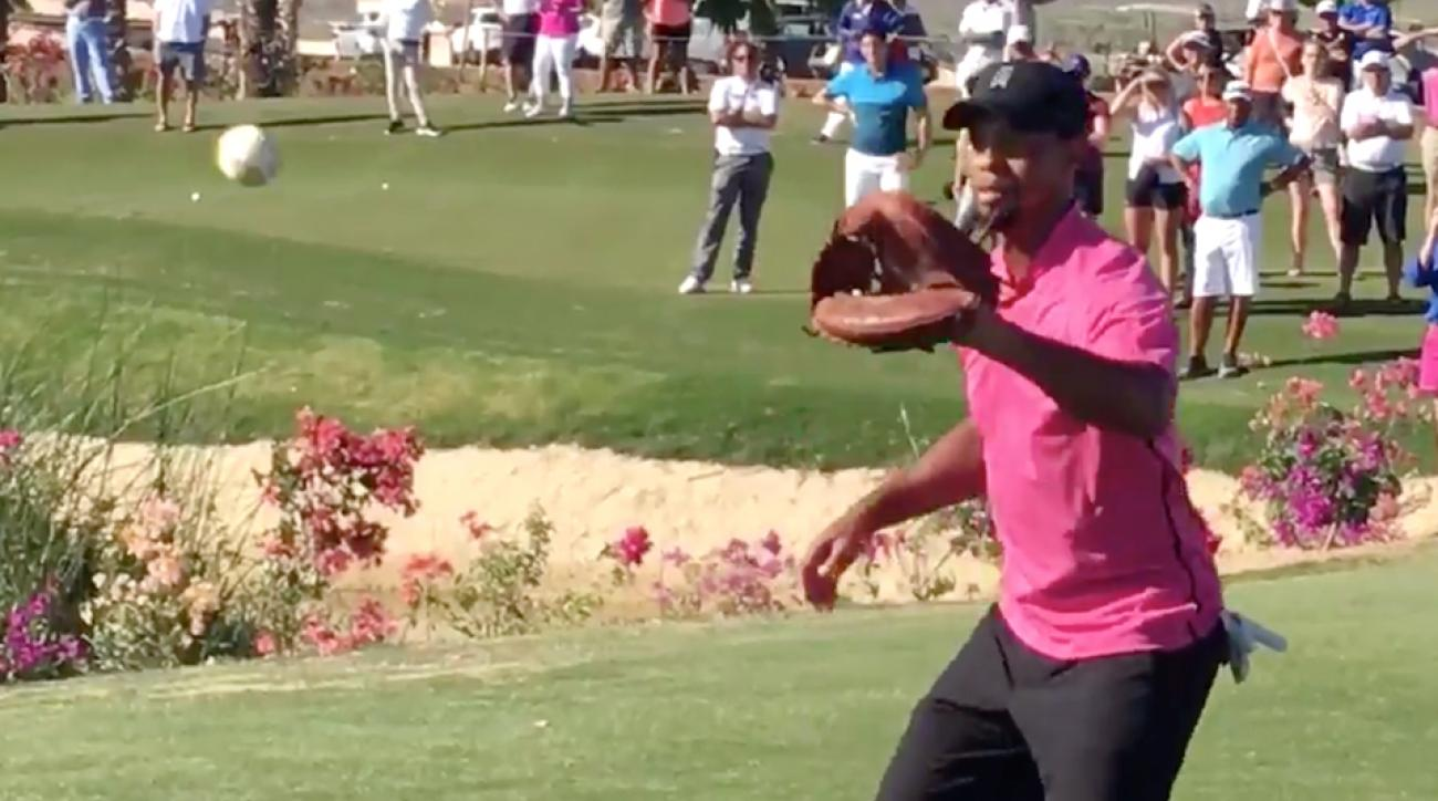 Tiger Woods, the baseball star?