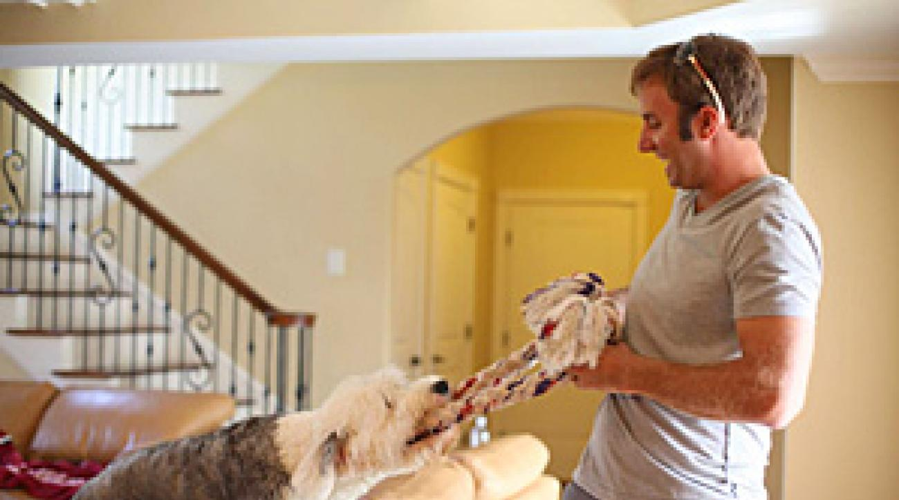 Dustin Johnson playing around at home with his sheepdog, Max.