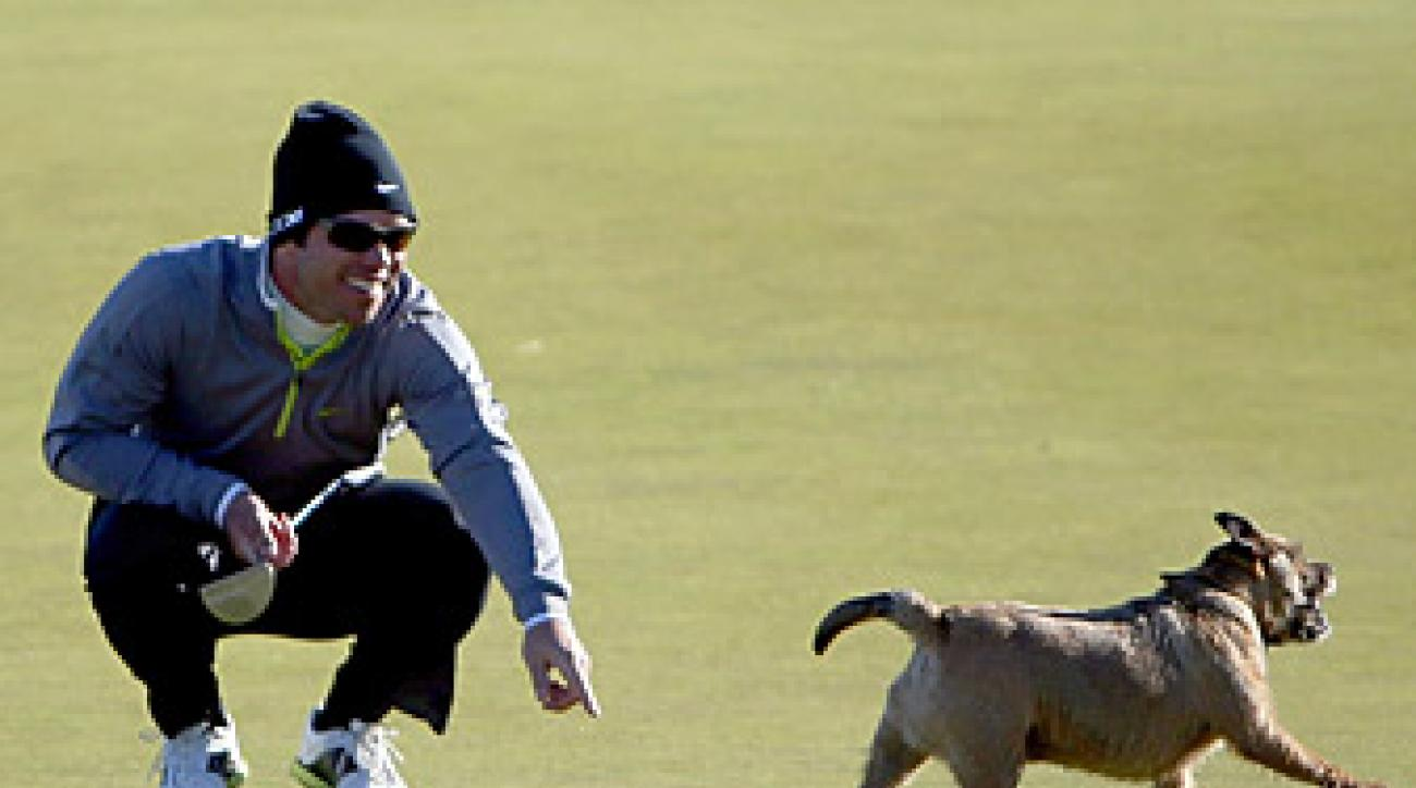 Casey ended up with a birdie on the hole, despite the canine's obstruction.