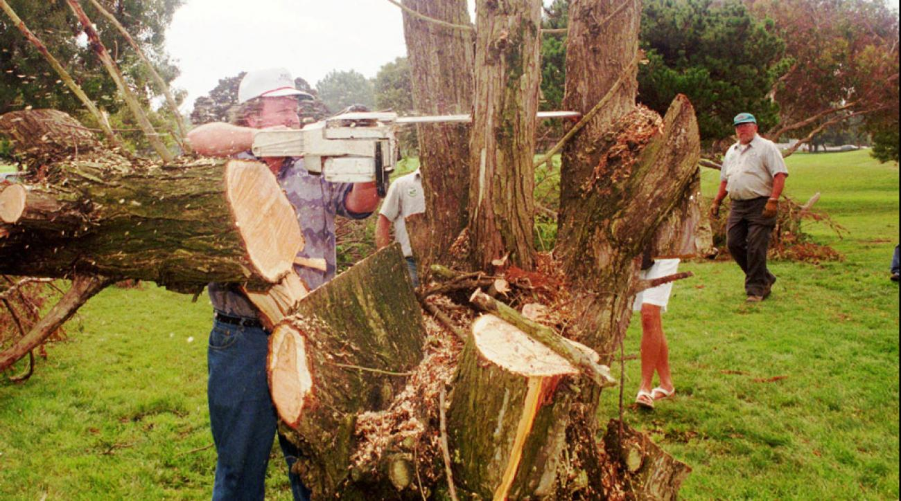 Craig Stadler cuts down the tree that got in his way at the 1987 Andy Williams Open at Torrey Pines.