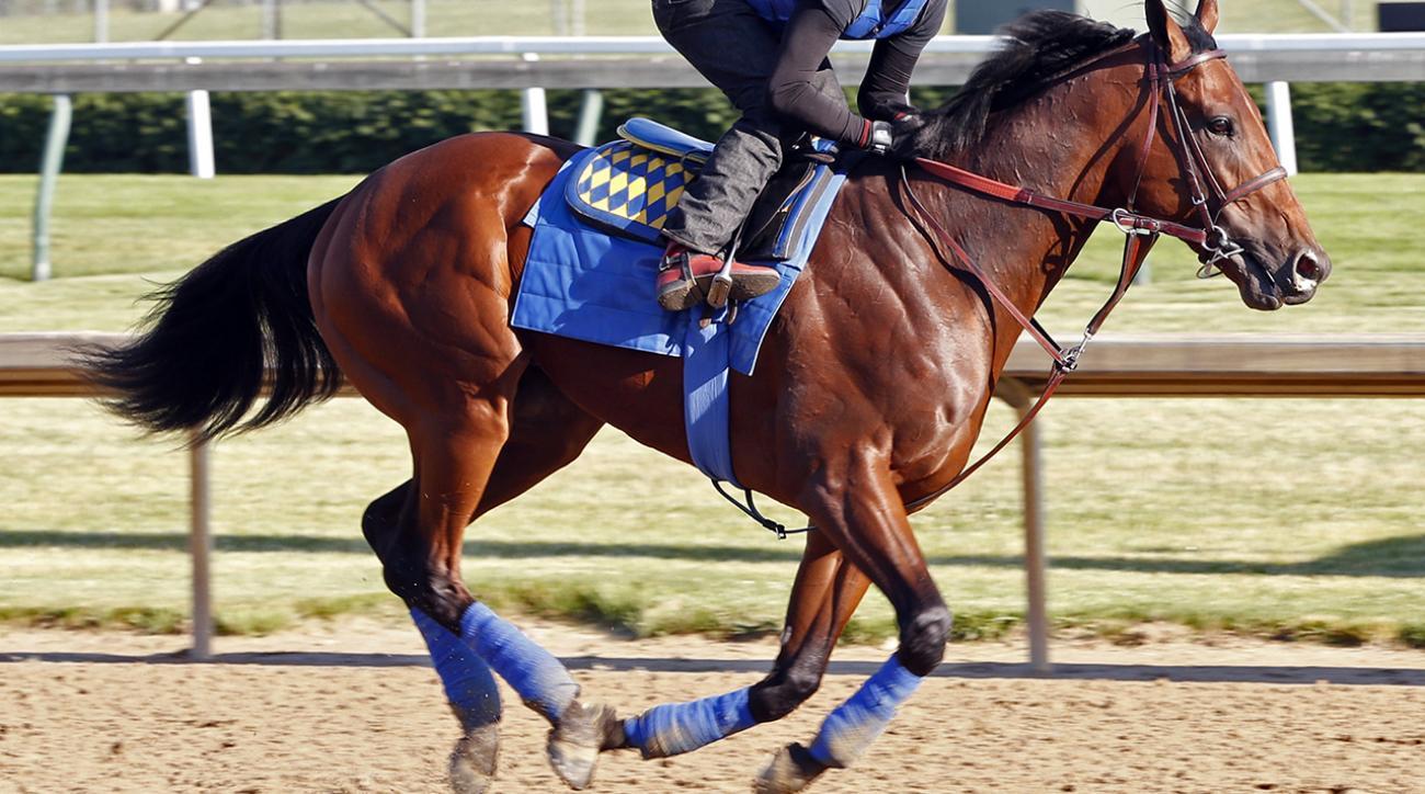 American Pharoah Belmont Stakes favorite