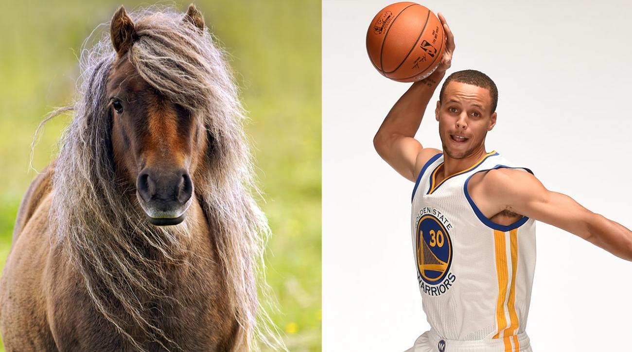 Watch: Stephen Curry rides mini pony