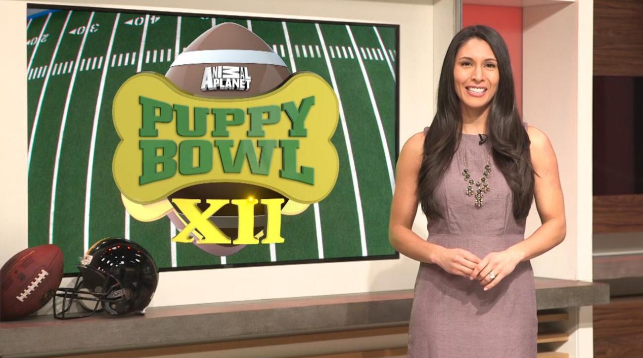 Extra Mustard's Puppy Bowl Power Rankings