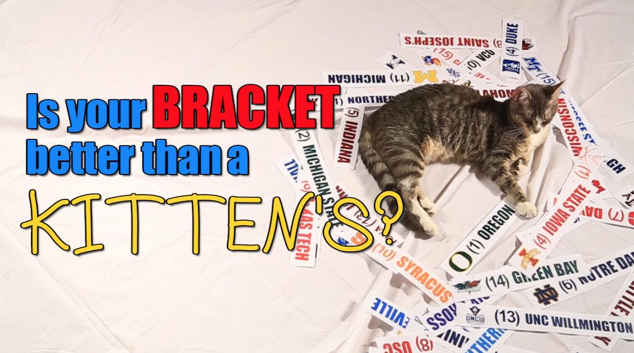 Mustard Minute: Is your NCAA Tournament bracket better than a kitten's? IMG