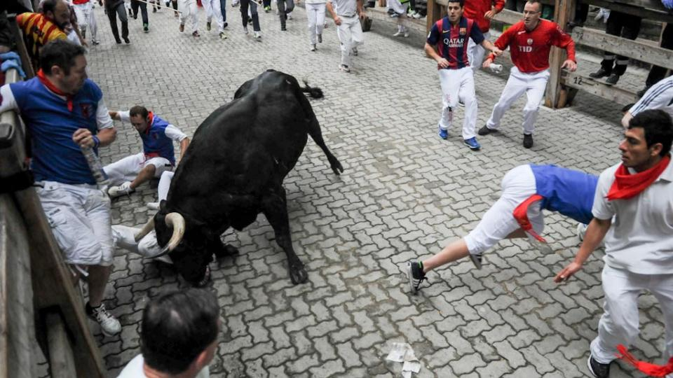Man who wrote book on surviving The Running of the Bulls gored by bull