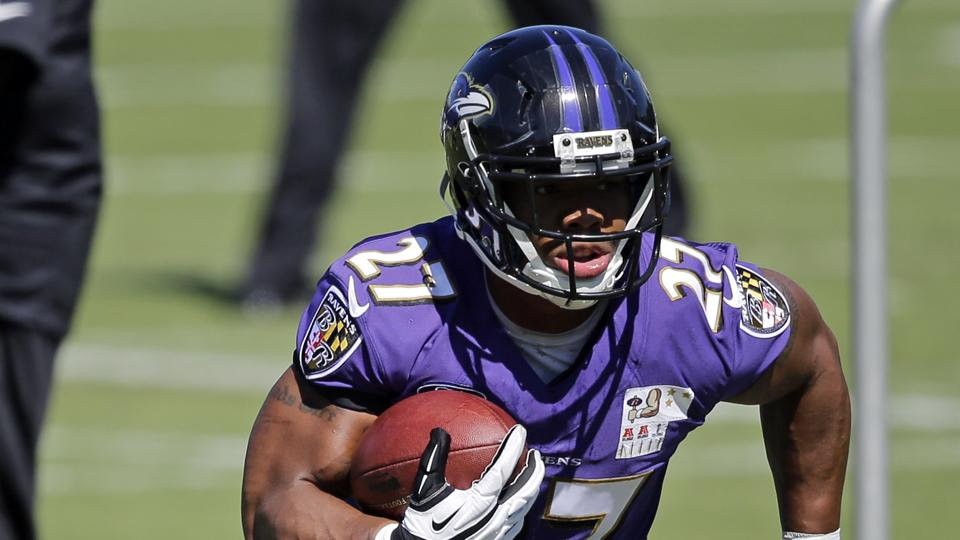 Ravens fans give Ray Rice standing ovation during practice