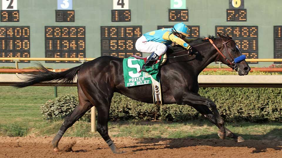 Whitney contender Prayer for Relief has never won a Grade I stake, but he has won a pair of Grade II races, including the 2011 Super Derby at Louisiana Downs.