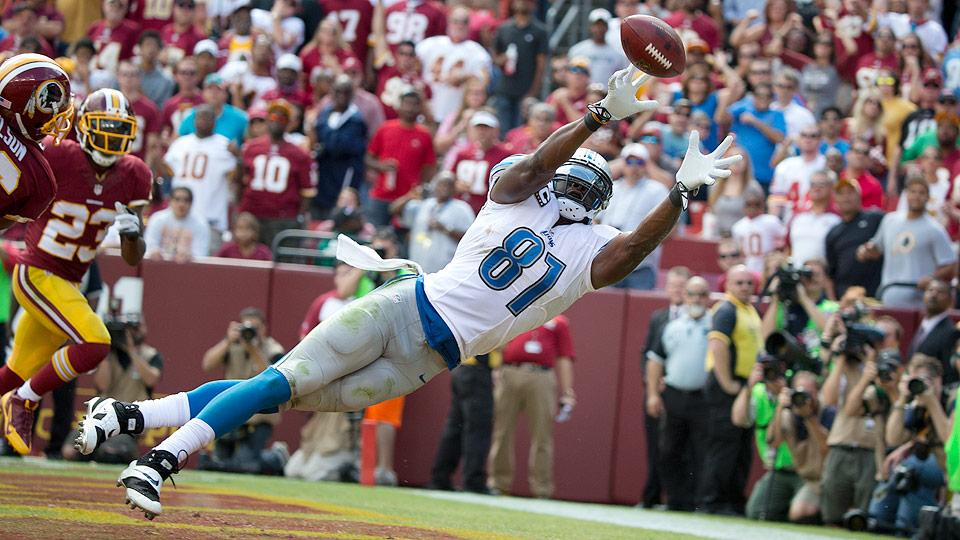 Fantasy football 2014 draft preview: Wide receiver position primer