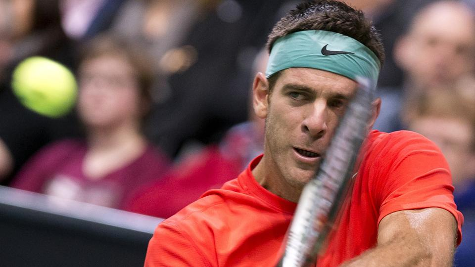 Juan Martin Del Potro pulls out of US Open