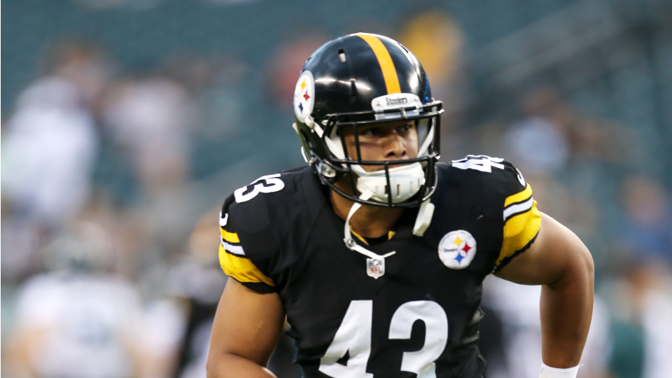 Troy Polamalu named Steelers captain for first time