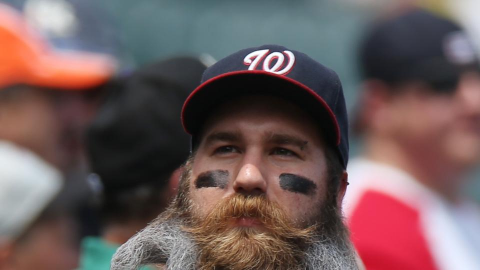 His beard curled to copy his favorite team's logo, Washington Nationals fan Eric Brooks looks on from the third base stands as the Colorado Rockies host the Nationals in the first inning of a baseball game in Denver on Wednesday, July 23, 2014. (AP Photo)