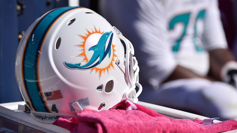 Dolphins-jaguars-buccaneer-oneorland-fund-donate