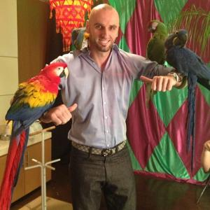 Buahaha found more birds:))))