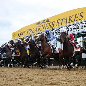 SI's best photographs from the Preakness, where longshot Oxbow denied the favorite, Orb, a shot at the Triple Crown. Orb (far right) broke from the rail but never found his rhythm en route to a fourth-place finish.