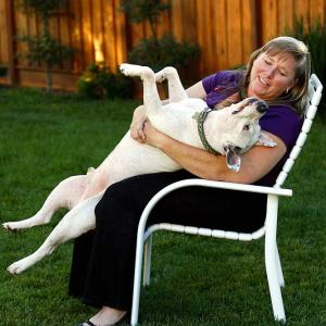 Teddles revels in the hands-on attention he gets from his adoptive owner, Cindy Houser.