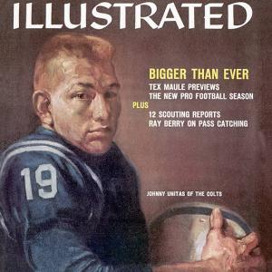 In honor of SI's latest book -  Sports Illustrated: The Covers --   here is a look back at the magazine's all-time best NFL covers.    To purchase a copy of the book,  click here.
