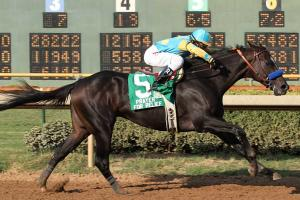 Whitney contender Prayer for relief has never won a Grade I race, but he has won