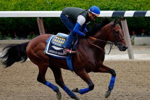 American Pharoah is the betting favorite at the 2015 Be...