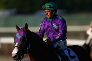 How the last 13 Triple Crown hopefuls fared at the Belm...