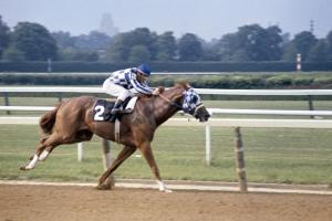 Watch Secretariat's 31-length victory at the 1973 Belmo...