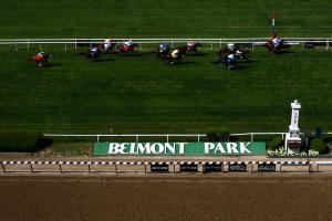 Helwan euthanized after broken bone at Belmont Park