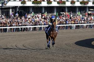 Watch: American Pharoah wins at Monmouth Park in first...