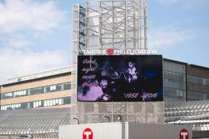 Twins to host a free viewing of Purple Rain