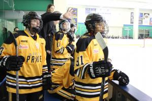 NWHL declines to respond to investment claims