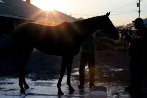 Kentucky Derby odds: Betting lines, favorites