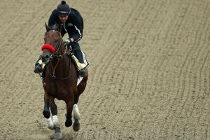 Nyquist a favorite for Preakness