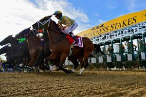 How to watch the Preakness Stakes
