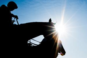 Preakness Stakes: Latest betting odds
