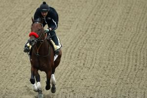 Nyquist trainer unfazed by rain at Preakness