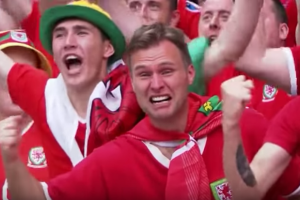 Wales fan experiences countless emotions in seconds