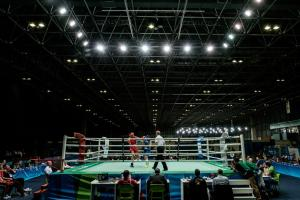 Professional boxers in Olympics will lose titles