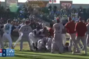 Minor league teams throw down in fantastic brawl