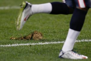 Peter King's Mailbag: Field Condition Agreement