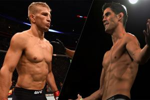 TJ Dillashaw and Dominick Cruz