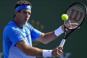 Juan Martin del Potro aware of challenges ahead