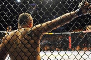 New York state passes bill to legalize MMA