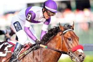Nyquist wins 2016 Kentucky Derby, remains unbeaten