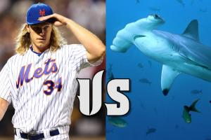 Mustard Minute: Which ballplayers could beat a shark?