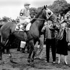 Count Fleet was known for blowing away his competition and winning with ease, including a track record 25 lengths victory at the Belmont.