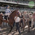 Just months after surgery to correct a breathing problem, Alysheba stumbled in the homestretch at Churchill Downs but still hung on to win the Derby. But his luck ran out at Belmont, where Bet Twice blew away the field to win by 14 lengths. Alysheba finished fourth.