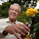 "Alex Karras poses for SI's ""Where Are They Now?"" on June 4, 2008 in the rose garden at his home in Los Angeles."