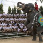 A Thai mahout guides his elephant to entertain school children during the break at a soccer match between men and elephants to celebrate the 2014 FIFA World Cup Brazil organized by Ayutthaya Elephant Camp in Ayutthaya province, central Thailand Monday, June 9, 2014.
