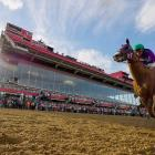 California Chrome passes the grandstand enroute to winning the 139th Preakness Stakes.