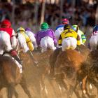 California Chrome is caught in the middle of the pack as he rounds turn one at Pimlico Race Course.
