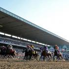 California Chrome (2nd from right) races out of the starting gate at the Belmont.
