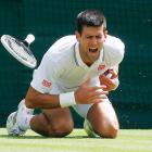 Novak Djokovic, of Serbia, shouts in pain after falling onto his shoulder during his men's singles match against Gilles Simon, of France, at Wimbledon.